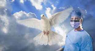 dove and a surgeon