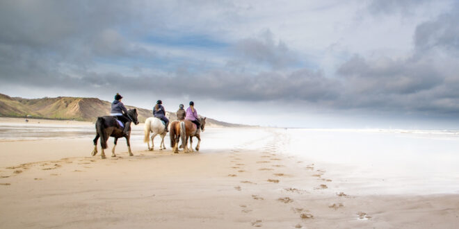 people on horse on the beach