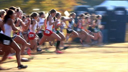 girls in Holland running a race