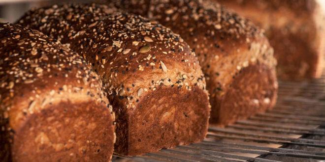 fresh made grain brad loafs