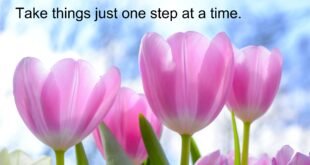 Take everything just one step at a time.