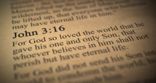 John 3:16 in the Bible