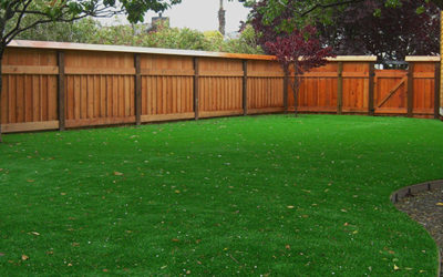 A Solution for Shade: Synthetic Grass Lawns