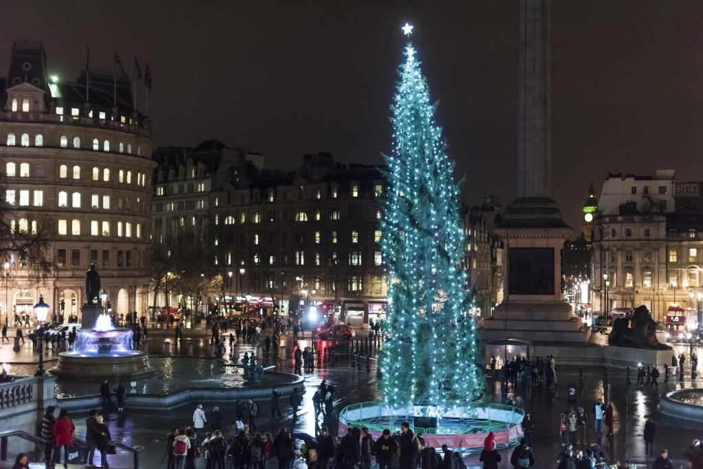 Trafalgar Square Christmas tree_image by BEN_PIPE_PHOTOGRAPHY
