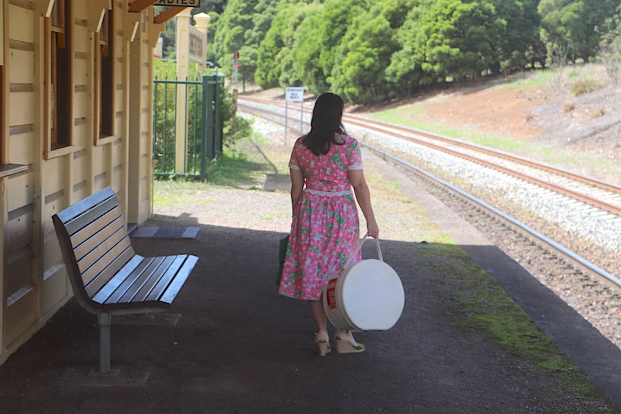 Robertson train station. Image: Vintage Travel Kat