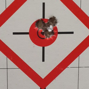 Grouping of 3, 165 gr Match, 308 Win, 110 yards, bullet velocity: 2640fps