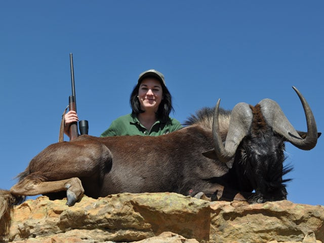 Black wildebeest, 3006 Springfield, 150gr BushMaster bullet, 240 yards, broadside shot.