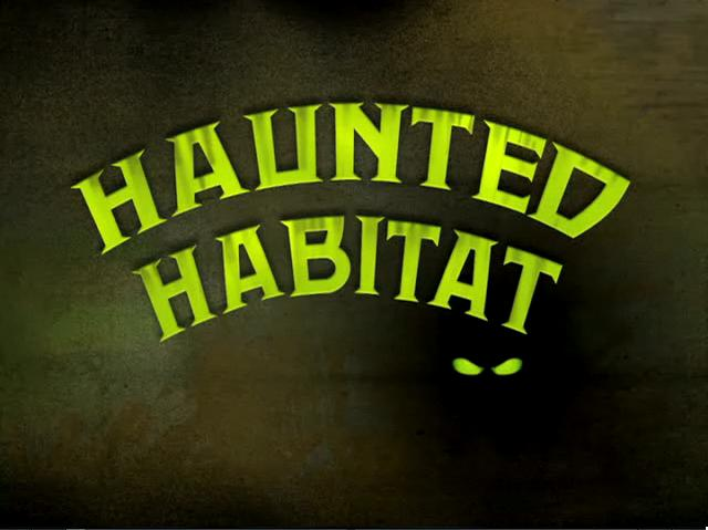 Haunted_Habitat