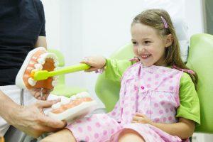 Little girl brushes teeth model