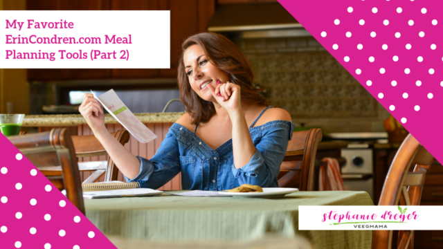 How To Meal Plan with ErinCondren.com Petite Planners