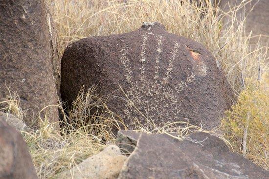 three-rivers-petroglyphs