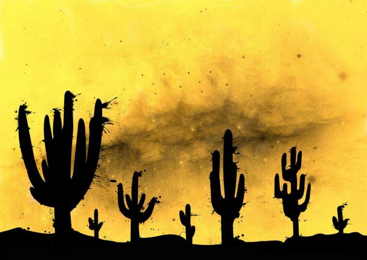 space-cactus