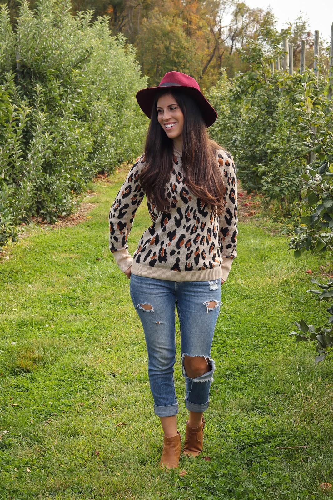 target-animal-print-sweater