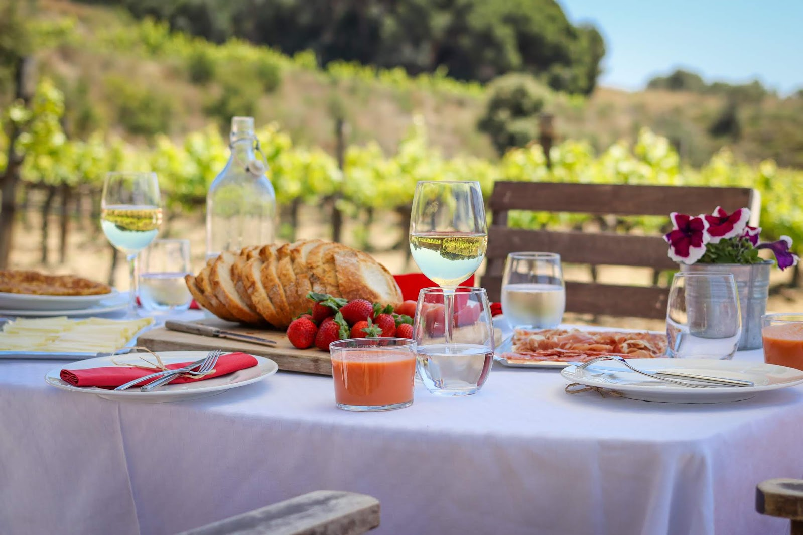 Lunch-at-a-vineyard-in-spain