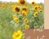 Fall_Activity_Bucket_List_Ideas