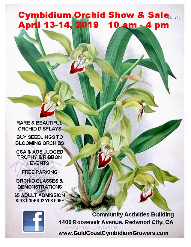 2019 Gold Coast Cymbidium Growers