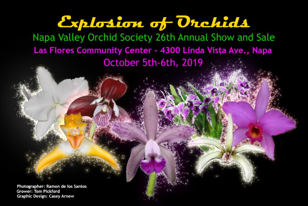 2019-10 NVOS Explosion of Orchids Show & Sale