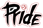 NJ Pride Softball