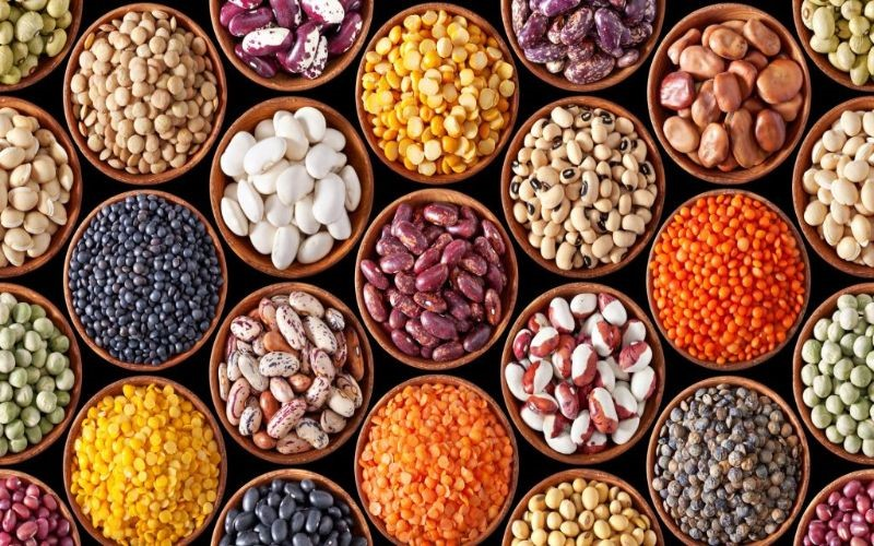 Picture of legumes