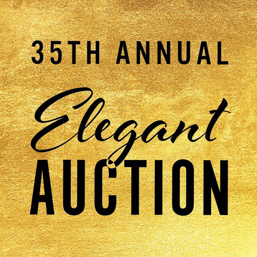 35th Annual Elegant Auction- Square