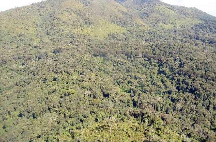 Nyamagabe: Hafi ya Nyungwe abagizi ba nabi batemye abaturage bane