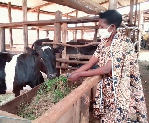 Nyaruguru: Abo mu mudugudu w'ikitegererezo w'Akagera  bavuga ko kuva mu manegeka ari ukwibohoza