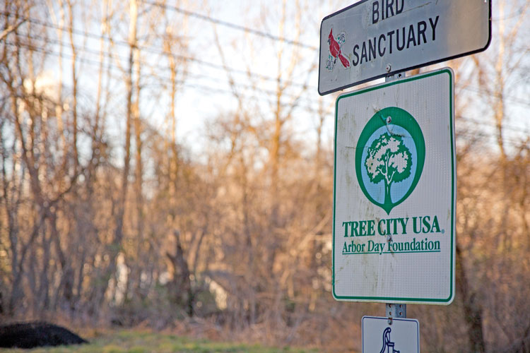 The Tree City sign can been seen along Route 50 as you enter into Middleburg.