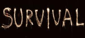 silvester-survival-logo-big-slim_460[1]