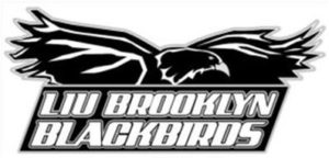 liu-brooklyn-blackbirds-85589040