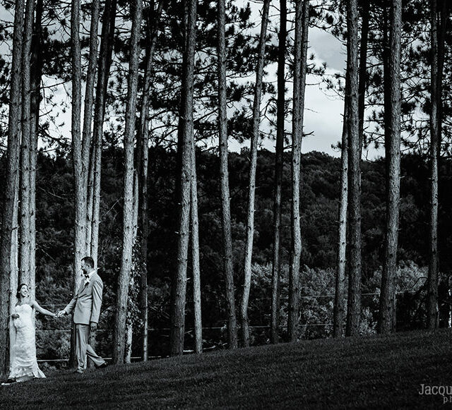 Ashley and Joel – A Romantic Homestead Blessings Wedding, Corning NY
