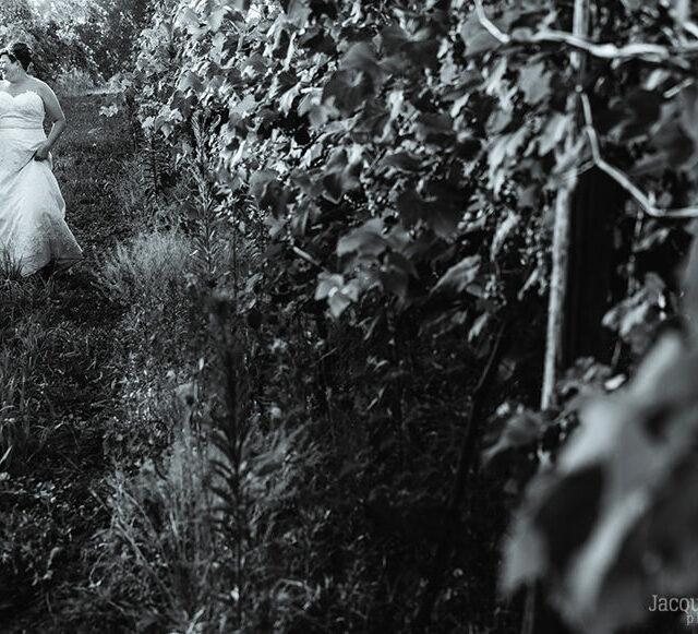Brita and Jenn – Romantic Quincy Cellars Wedding Photography, Ripley NY