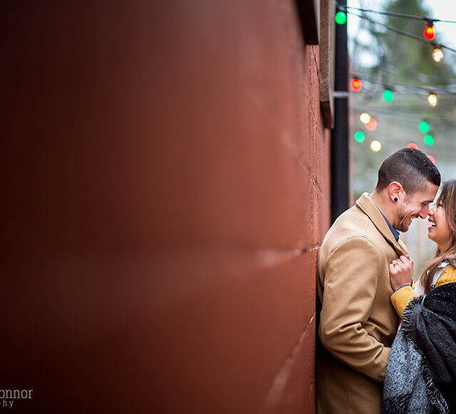 Steph and Cris – Knox Farm Engagement Photography, East Aurora NY