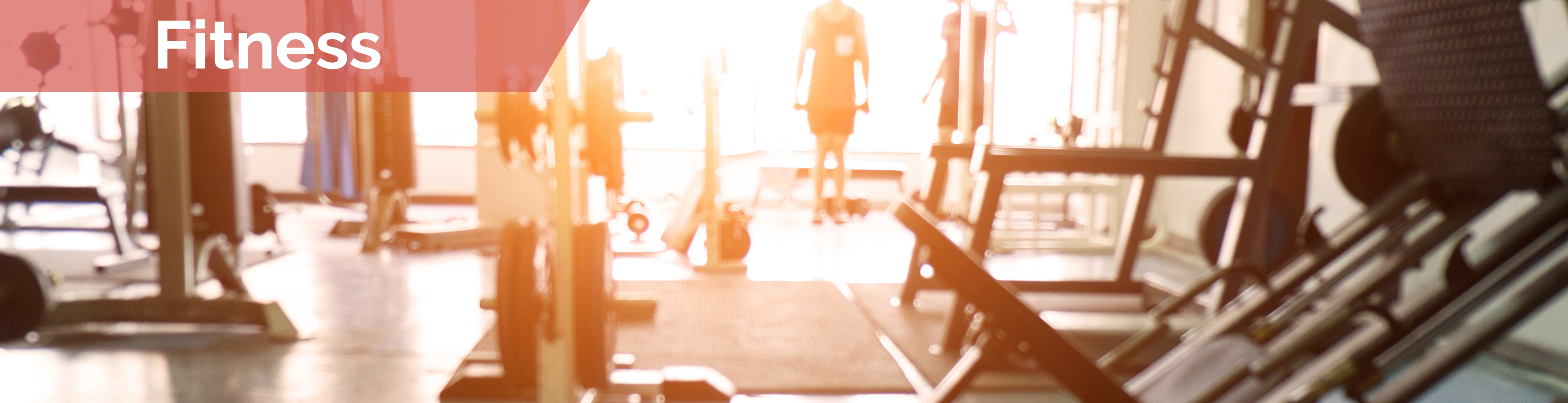 Creezo Fitness