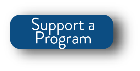 Program Button