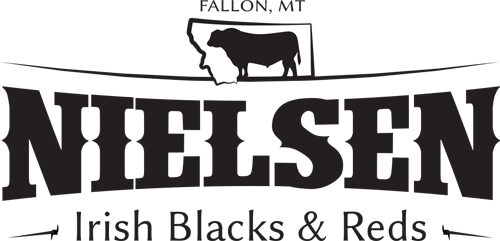 Nielsen Irish Black and Red Cattle