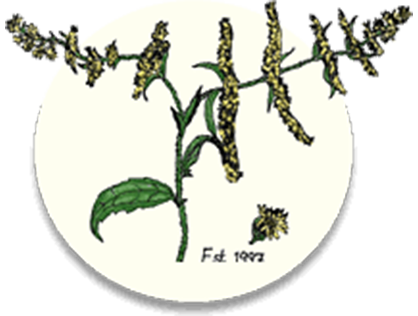 Finger Lakes Native Plant Society Logo