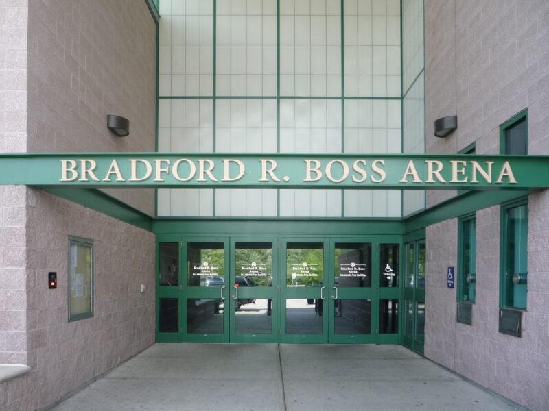 Boss-Arena-entry-e1584733660736.jpg