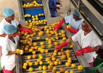 Many firms in the agro-processing space could find GAX useful in seeking capital to expand their production to meet demands