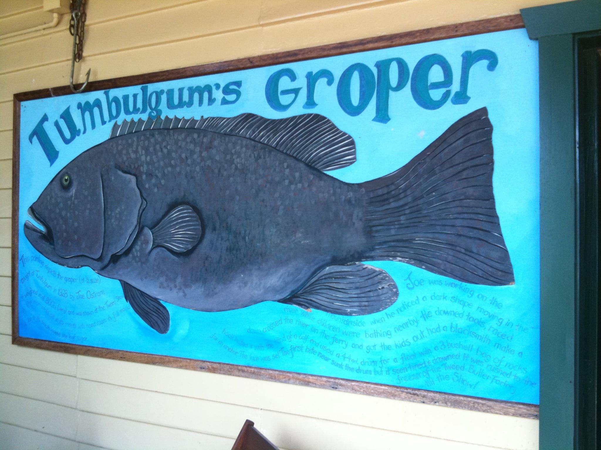 Tumby-Groper