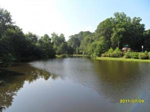 Do it yourself pond algae treatment with Bio Lake Clear
