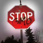 GMO - Genetically Modified Food