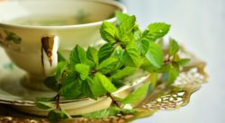 herbal therapies - herbal remedy