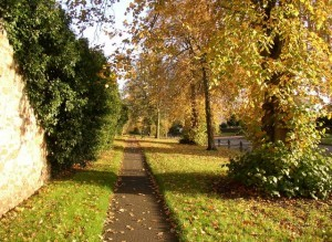 New Pathway to Healing Attitude Of Gratitude  Image of Verge Scattergate Appleby   geograph.org .uk   274961 300x219