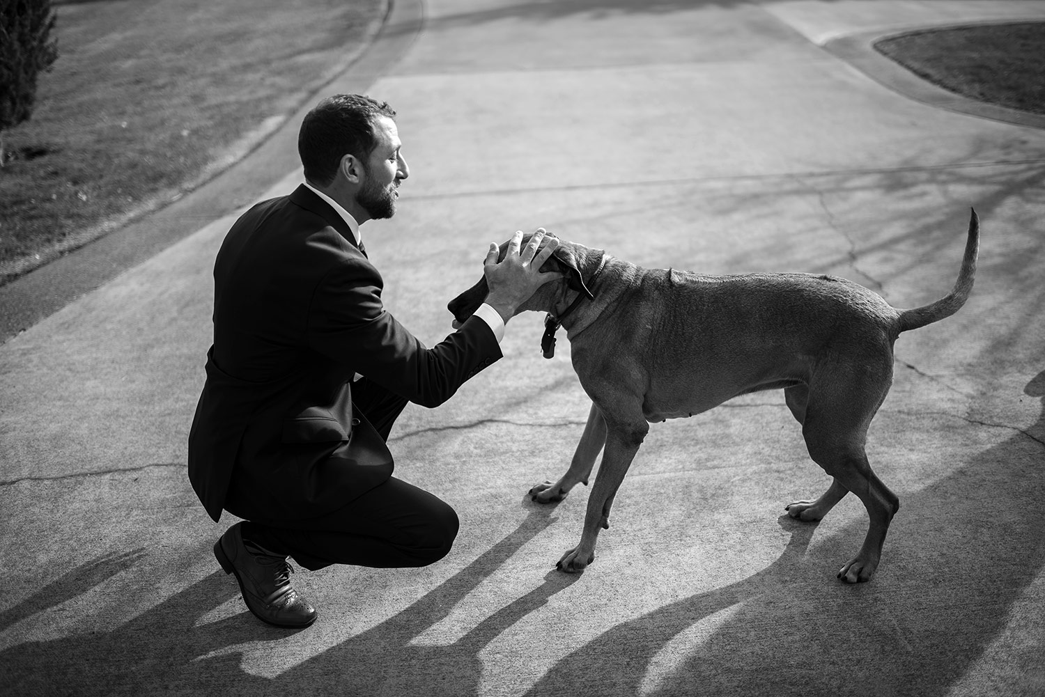 Groom and Dog in black and white during a Whidbey Island wedding at Comforts Winery