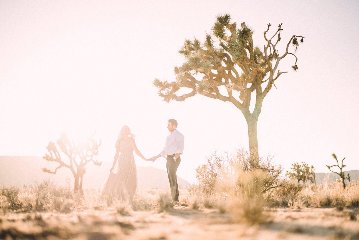 Joshua Tree California Engagement Session