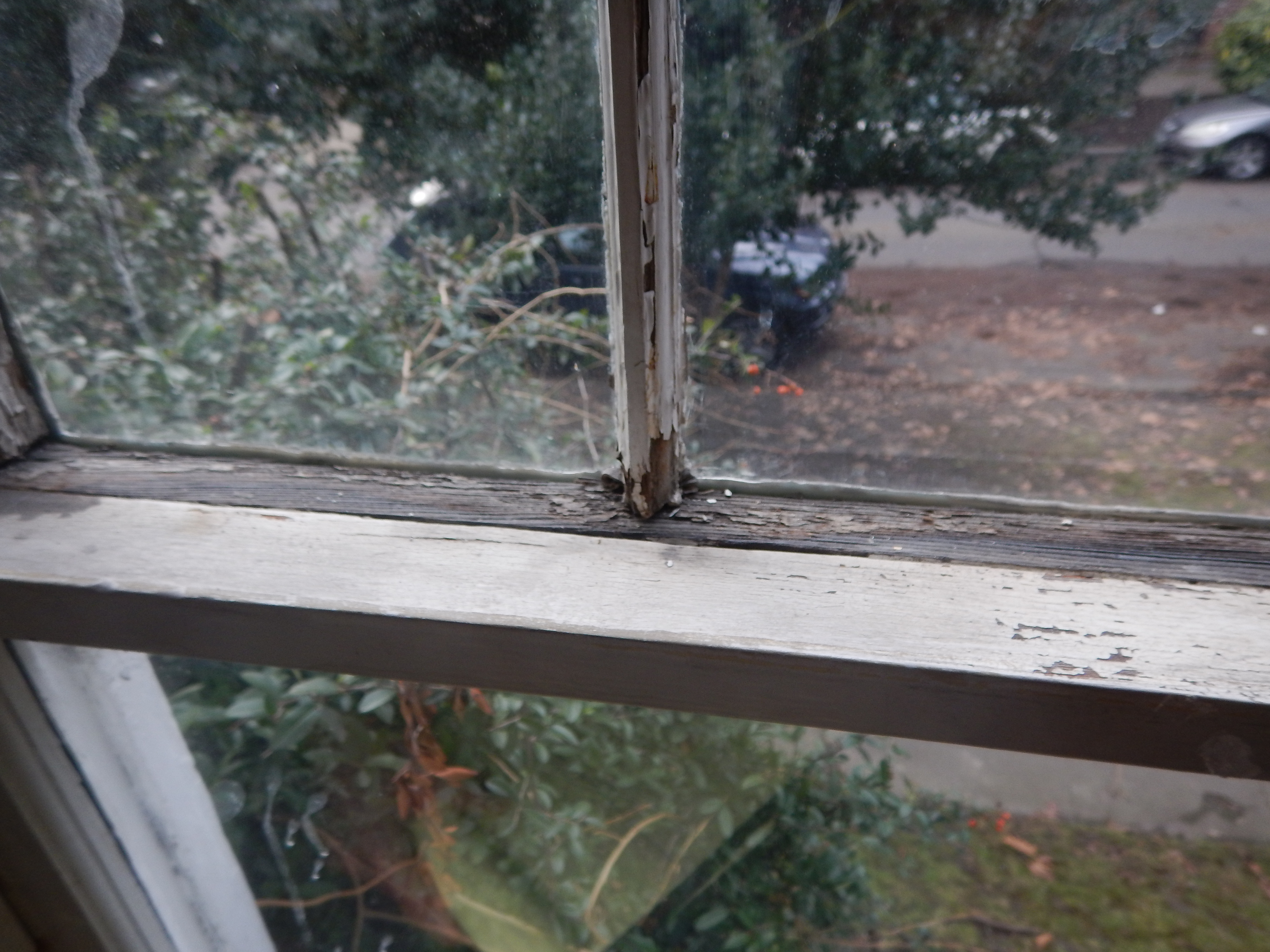wood window restoration neglect