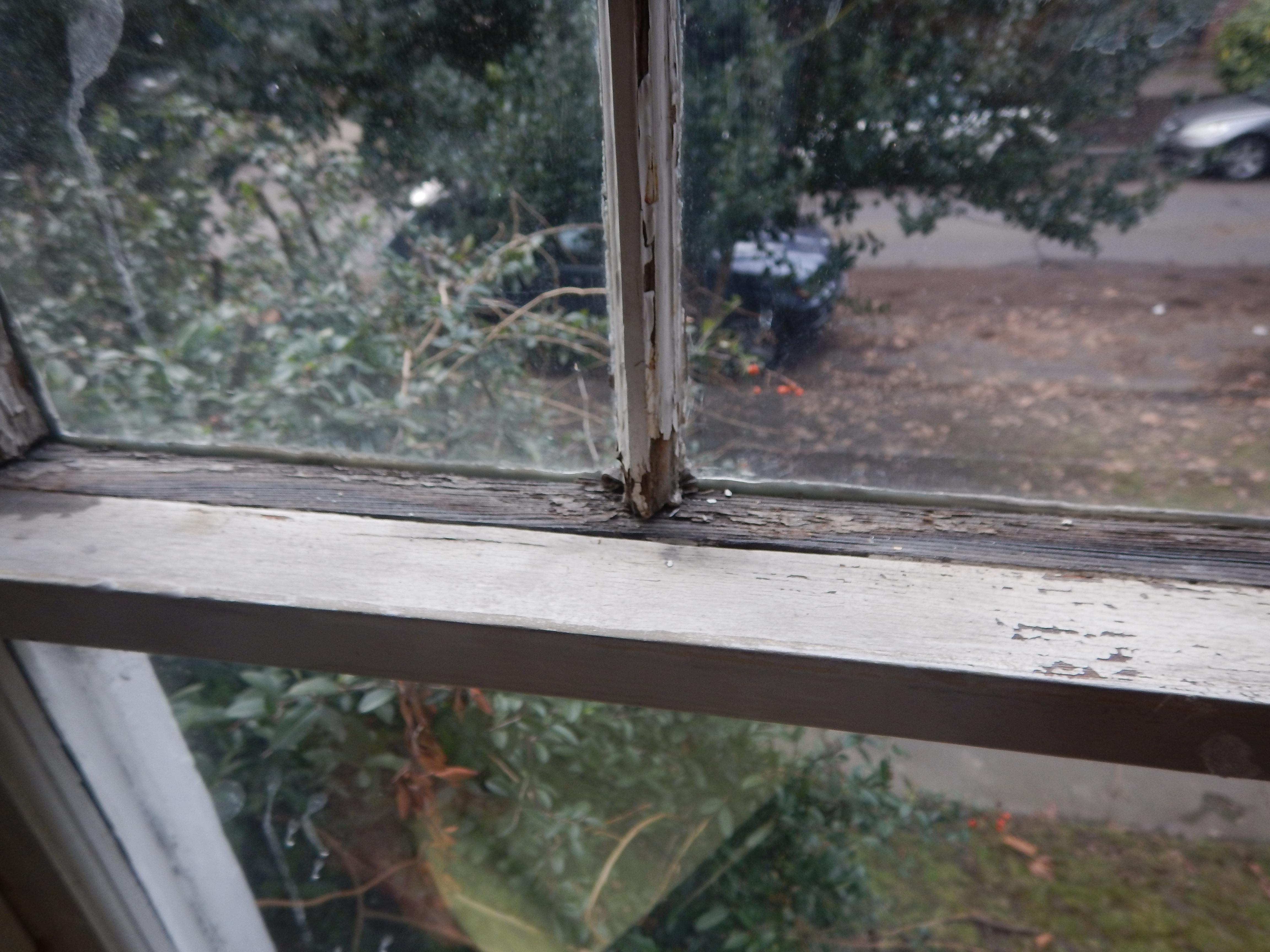 wood window restoration neglect