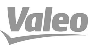 V-company