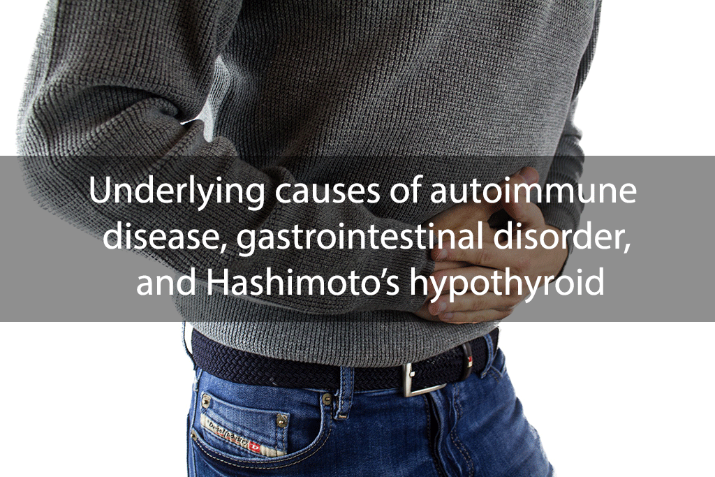 Underlying causes of autoimmune disease, gastrointestinal disorder, and Hashimoto's hypothyroid