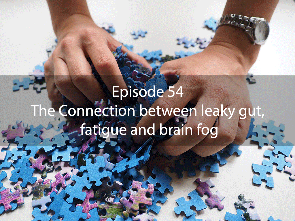AskDrKan Show – Episode 54 – The Connection between leaky gut, fatigue and brain fog